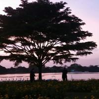 Areeyong